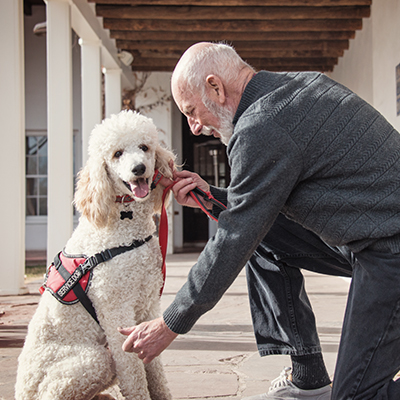 Connecticut CE:Assistance Animals And Fair Housing